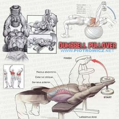 Dumbbell Pullover - Fitness Workout For Chest Sixpack Arms Train - PROJECT NEXT - Bodybuilding & Fitness Motivation + Inspiration