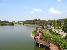 7 Family Friendly Nature Spots in Singapore  (A gorgeous view of Punggol's Riverine Loop in picture)