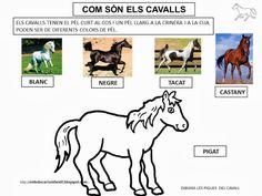 PROJECTE EL CAVALL - m.àngels t - Picasa Web Albums Picasa Web Albums, Animal Books, Line Illustration, Peanuts Comics, Horses, Learning, Memes, Painting, Animals