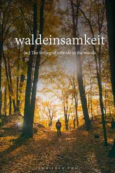 50 Unusual Travel Words with Interesting Meanings – I am Aileen WALDEINSAMKEIT: 50 Unusual Travel Words with Interesting Beautiful Meanings — Ever been at a loss for words to describe . Unusual Words, Weird Words, Rare Words, Unique Words, Cool Words, Interesting Words, German Words, English Words, Beautiful Meaning