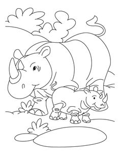 rhinoceros and baby rhinoceros coloring page