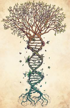 tree made of dna