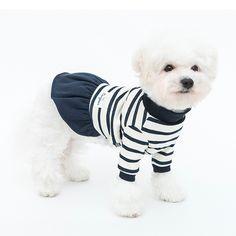 Winter Stripe Dress - Navy