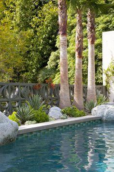 gabriela yariv landscape design / residential garden in homage to albert frey, pasadena