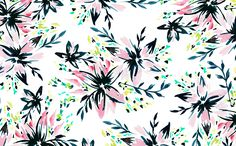 August Tropical Floral Wallpapers