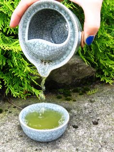 Zielona herbata japońska Fukamushicha iri Matcha