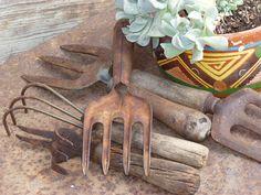 Vintage Garden Tools, old hand tools, 5 cultivators - hand rakes- wooden handles Farm Tools, Garden Tools, Garden Sheds, Garden Junk, Garden Gate, Metal Tools, Old Tools, Vintage Gardening, Gardens