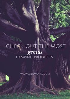 Sign up for WildWorld. It's free, easy, and has everything you need for the best camping trip ever!