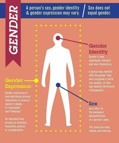 "Gender, Gender Identity, and Gender expression.  Huge pet peeve when the terms ""gender"" and ""sex"" are used interchangeably."