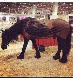 Engel of paard?