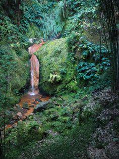 Cascade d'eau chaude du site naturel de la Caldeira Velha, sur l'île São Miguel, dans l'archipel des Açores #voyage #randonnée #portugal