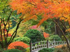 Autumn Season | ... autumn season desktop wallpaper, Desktop beautiful Autumn Seasons