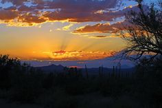Tucson, AZ the most beautiful sunsets ever here in Tucson :)