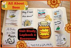 In this All About Bees Unit Study for elementary kids learn about the bees, hive, and honey. Includes a FREE labook, online resources, a book list and more! Bees For Kids, Bee Activities, Children Activities, Hives And Honey, Honey Bees, Nature Study, Homeschool Curriculum, Homeschooling Resources, Life Cycles