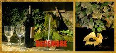 Nos Chambres d'Hôtes au bord du lac d'Annecy: 2014 December 20 - La Vallombreuse's Advent calend...
