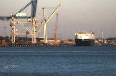Big boat, bigger crane - null