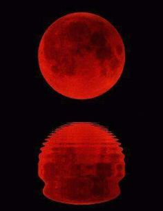 The Red Blood Moon....