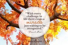 With every challenge in life there exists a miracle just waiting to be recognized. ~Panache Desai  #growth #challenge #miracles  @Simple Reminders