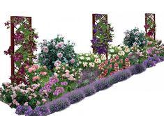 Как вписать лилии и ирисы в ландшафтный дизайн?: 12 тыс изображений найдено в Яндекс.Картинках