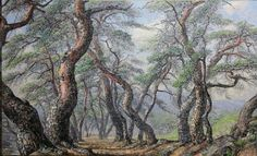 Watercolor Mixing, Landscape Paintings, Tree Paintings, Tans, Pathways, Amazing Art, Scenery, Drawing Drawing, Etchings