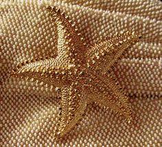 Golden Starfish ♥