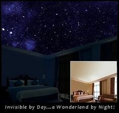 Starscapes ~ in daytime your bedroom ceiling looks normal, but when it gets dark, it's like star gazing through a glass ceiling. I need this in every room of my house! Ceiling Murals, Bedroom Ceiling, Bedroom Decor, Bedroom Ideas, House Ceiling, Bedroom Murals, Bedroom Lighting, My New Room, My Room