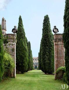 Villa Cetinale Landscape