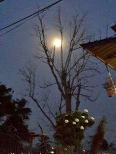 Full moon 2014 Trinidad