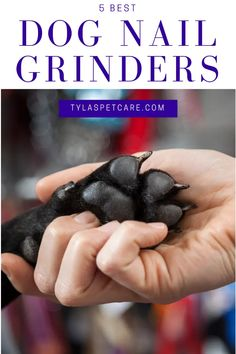 We have found the 5 best nail grinders for your dog's next pedicure. With the number of different types of nail trimmers, it can be confusing. Dog Dental Care, Pet Care, Nail Guards, Different Types Of Nails, Dog Nails, Trim Nails, Nails At Home, Dog Grooming, Best Dogs
