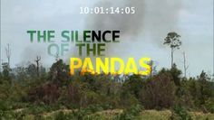 WWF - Silence of the Pandas - Video Dailymotion