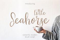 Little Seahorse Script by Mellow Design Lab on @creativemarket