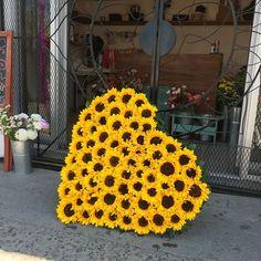 Summer Party or Wedding Sunflower Heart - Floral Arrangement. Trendy Wedding, Rustic Wedding, Dream Wedding, Wedding Ideas, Wedding Reception, Sunflower Hearts, Sunflower Garden, Sunflower Fields, Yellow Sunflower