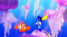 Swim with jellyfish