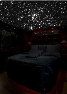 5D Galaxy Ceilings: StarMurals Have Actual Shooting Stars (I CAN HAS)