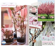 Love the contrast of the black rocks and the cherry blossoms in the vases...