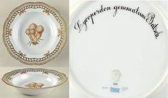 Flora Danica Fungi Collection Pierced Large Rim Soup Bowl by Royal Copenhagen Flora Danica, Gem Crafts, Mushroom Art, Royal Copenhagen, Fungi, Decorative Plates, Soup, Entertaining, Tableware