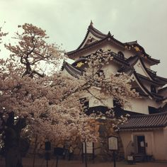 hiokone castle