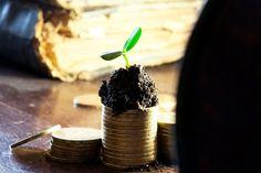 Nederlanders zijn niet vies van crowdfunding