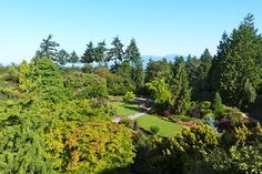 The Best of Vancouver: Top 10 Attractions to Explore