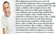 Malignant narcissist