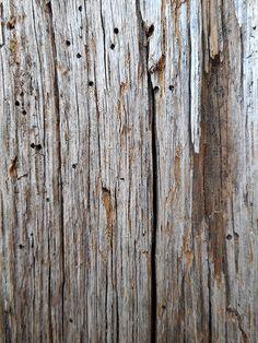 legno - vecchio tarlato | da decoriciclo