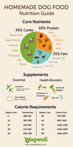 Homemade Dog Food: Recipes & Nutrition Guide - Learn how many carbs and protein your dog needs