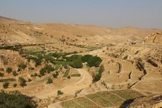 Agriculture on Mount Sinjar. Ravines provide a sparse source of water to ancient fields used by the Yazidis to plant vegetables to supplement aid deliveries. Florian Neuhof for The National