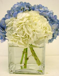 This is a cube vase floral arrangement that features blue and white hydrangea.  See our entire selection at www.starflor.com.  To purchase any of our floral selections, as gifts or décor, please call us at 800.520.8999 or visit our e-commerce portal at www.Starbrightnyc.com. SQ064