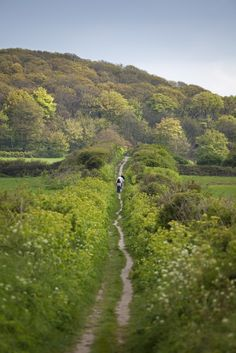 The English countryside is strewn with footpaths, perfect for walking and hiking into the hills.