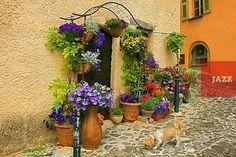 Фотографии региона Прованс (Прованс на фото и видео)