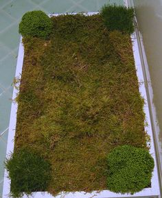 Moss Bathmat