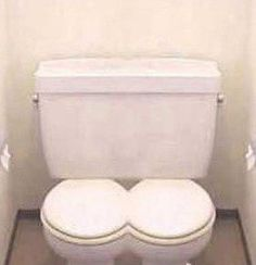 Lovers close stool double toilet seat design  August 2013