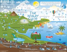 Water Cycle for Kids - Describes how water is not only always changing forms, between liquid (rain), solid (ice), and gas (vapor), but also moving on, above, and in the Earth.
