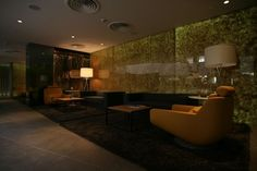 2012 Radisson Hotel LobDesign by Design by Tanju Özelgin Decorating Pictures